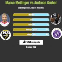 Marco Meilinger vs Andreas Gruber h2h player stats
