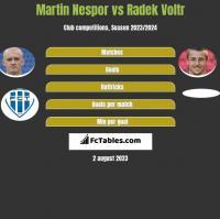 Martin Nespor vs Radek Voltr h2h player stats
