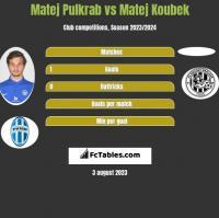 Matej Pulkrab vs Matej Koubek h2h player stats
