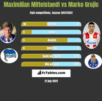Maximilian Mittelstaedt vs Marko Grujic h2h player stats