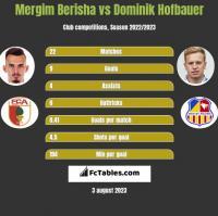 Mergim Berisha vs Dominik Hofbauer h2h player stats