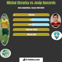 Michal Skvarka vs Josip Knezevic h2h player stats