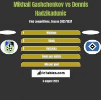 Mikhail Gashchenkov vs Dennis Hadzikadunic h2h player stats