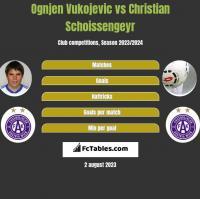 Ognjen Vukojevic vs Christian Schoissengeyr h2h player stats