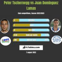 Peter Tschernegg vs Juan Dominguez Lamas h2h player stats