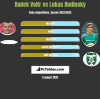 Radek Voltr vs Lukas Budinsky h2h player stats