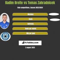 Radim Breite vs Tomas Zahradnicek h2h player stats