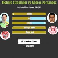 Richard Strebinger vs Andres Fernandez h2h player stats
