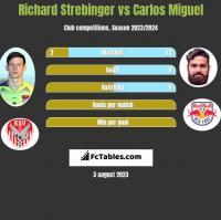 Richard Strebinger vs Carlos Miguel h2h player stats