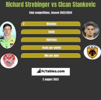 Richard Strebinger vs Cican Stankovic h2h player stats