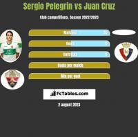 Sergio Pelegrin vs Juan Cruz h2h player stats