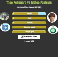Theo Pellenard vs Mateo Pavlovic h2h player stats