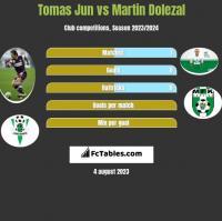 Tomas Jun vs Martin Dolezal h2h player stats