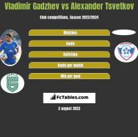 Vladimir Gadzhev vs Alexander Tsvetkov h2h player stats