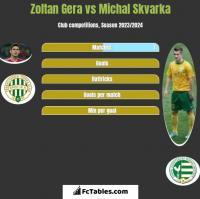 Zoltan Gera vs Michal Skvarka h2h player stats