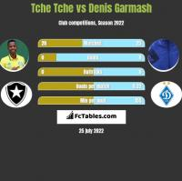 Tche Tche vs Denis Garmash h2h player stats