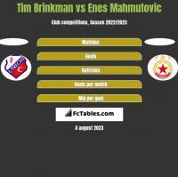 Tim Brinkman vs Enes Mahmutovic h2h player stats