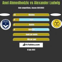 Anel Ahmedhodzic vs Alexander Ludwig h2h player stats