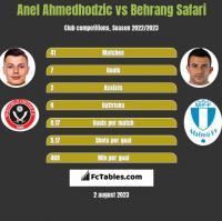 Anel Ahmedhodzic vs Behrang Safari h2h player stats