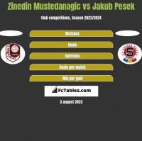 Zinedin Mustedanagic vs Jakub Pesek h2h player stats