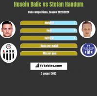 Husein Balic vs Stefan Haudum h2h player stats