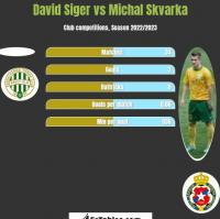 David Siger vs Michal Skvarka h2h player stats