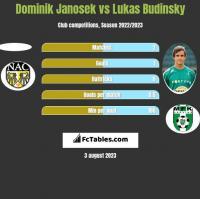 Dominik Janosek vs Lukas Budinsky h2h player stats