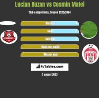 Lucian Buzan vs Cosmin Matei h2h player stats