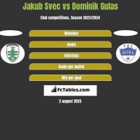 Jakub Svec vs Dominik Gulas h2h player stats