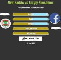 Elvir Hadzic vs Sergiy Shestakov h2h player stats