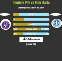 Dominik Fitz vs Emir Karic h2h player stats
