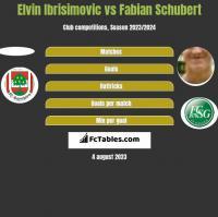 Elvin Ibrisimovic vs Fabian Schubert h2h player stats